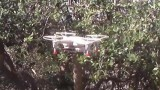 DBPower Hawkeye II Quadcopter Review and Demonstration